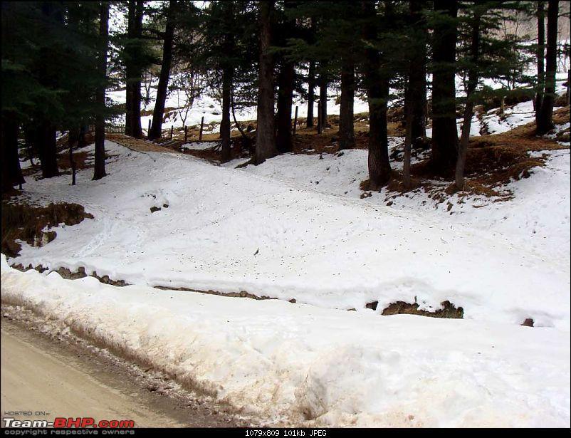 Hawk-0n-Fours® (H-4®) Roadtrip: H-4® & QuickSilver Go Snow-Hunting-dsc02357k100.jpg