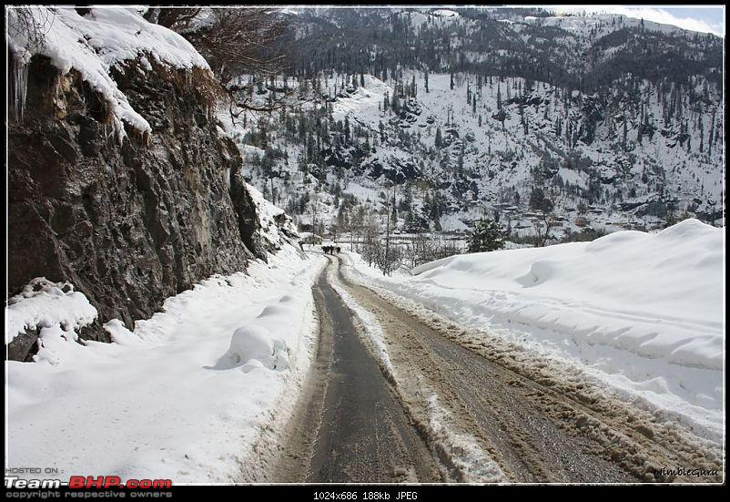 Bangalore to Manali and back - The chills and the thrills!-img_0688.jpg