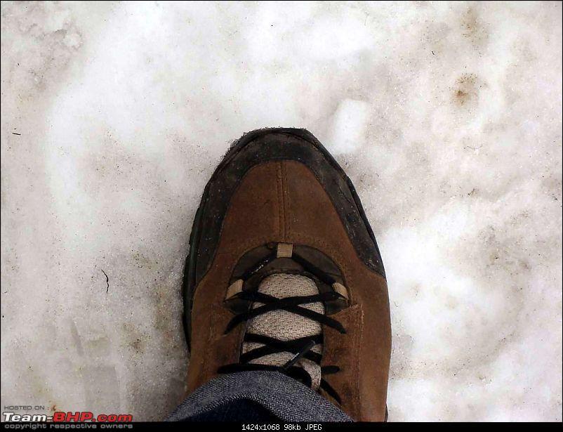 Hawk-0n-Fours® (H-4®) Roadtrip: H-4® & QuickSilver Go Snow-Hunting-dsc02419k100.jpg