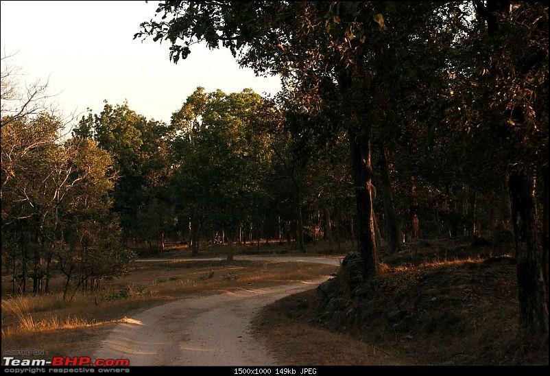 Magnificent Pench !-img_0296.jpg