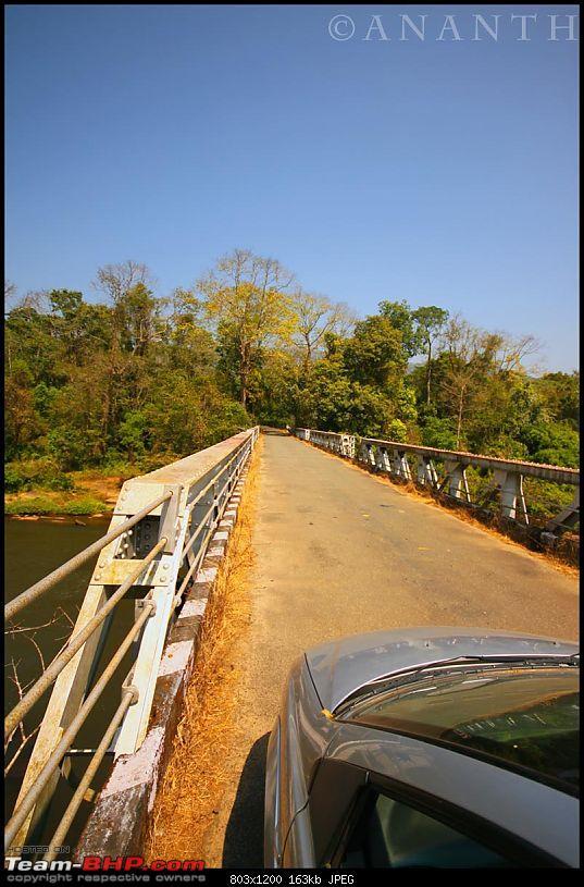 The South Western Drive : Valparai - Nelliampathi - Parambikulam - Kodai-img_0681.jpg