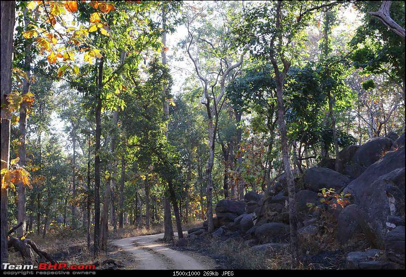 Magnificent Pench !-img_2442.jpg
