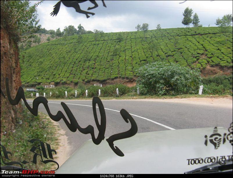 Chennai - Madurai - Alagar Kovil - Munnar - Thanjavur - Chennai-picture-755-fileminimizer.jpg