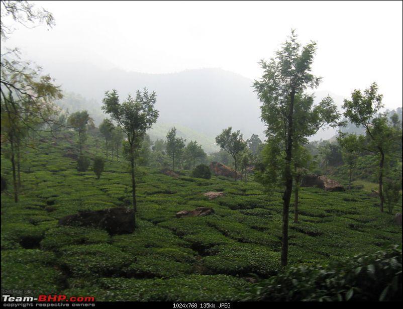 Chennai - Madurai - Alagar Kovil - Munnar - Thanjavur - Chennai-picture-911-fileminimizer.jpg