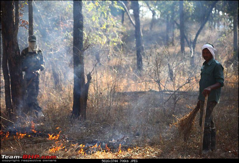 Magnificent Pench !-img_3529.jpg