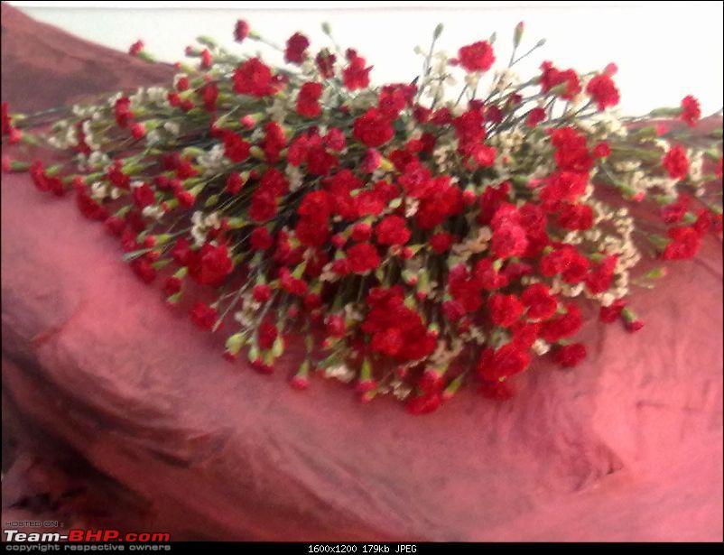Cochin Flower Show, A mini photologue-13022011140.jpg