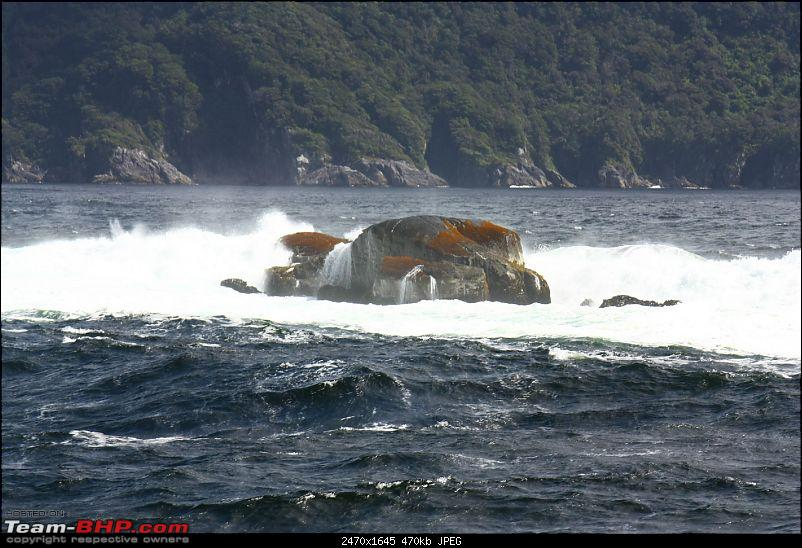 From the Land of the Kiwis (New Zealand)-img_1476.jpg