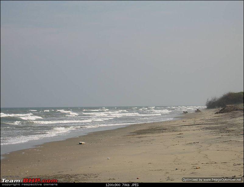 New Year 2011 - Chennai - Pondy - Pichavaram - Pondy - Chennai-ny11-106.jpg