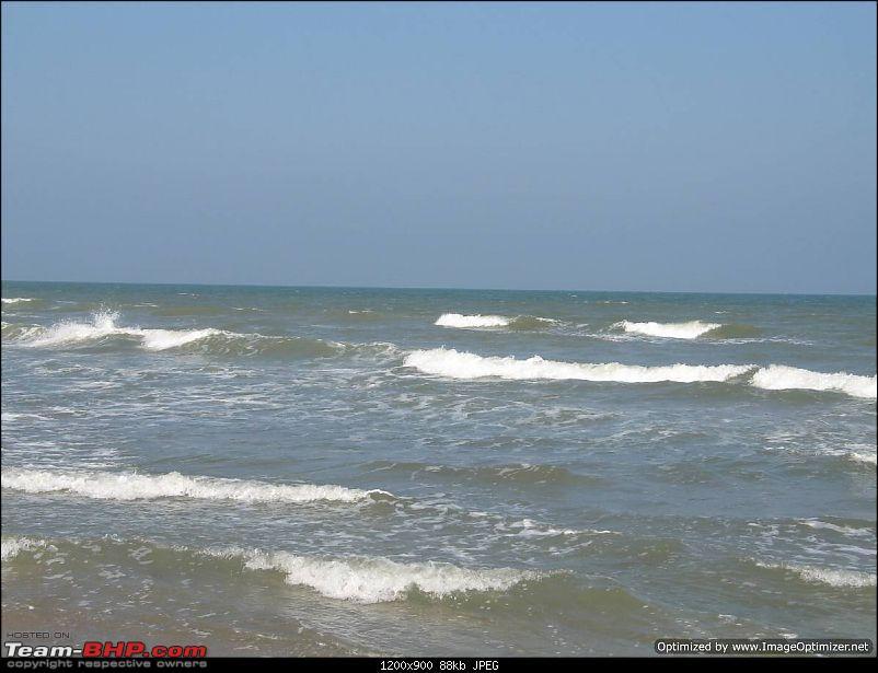 New Year 2011 - Chennai - Pondy - Pichavaram - Pondy - Chennai-ny11-109.jpg