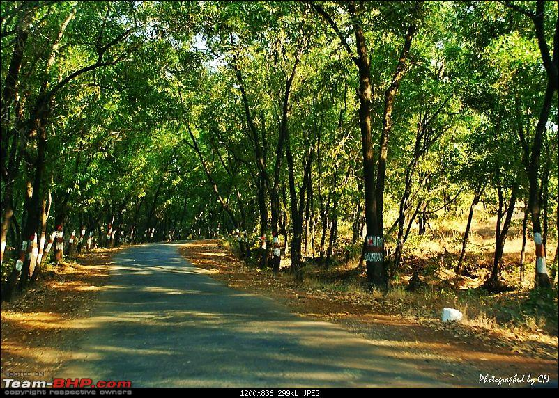 "An incredible road trip to the ""Pearl of the Orient"" – Goa-15-gaganbawda_sh114.jpg"