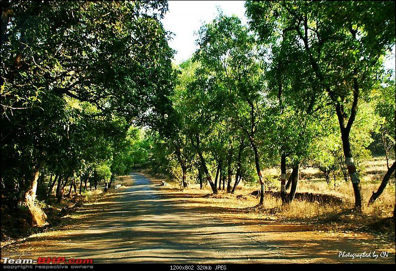 "An incredible road trip to the ""Pearl of the Orient"" – Goa-16-gaganbawda_sh114.jpg"
