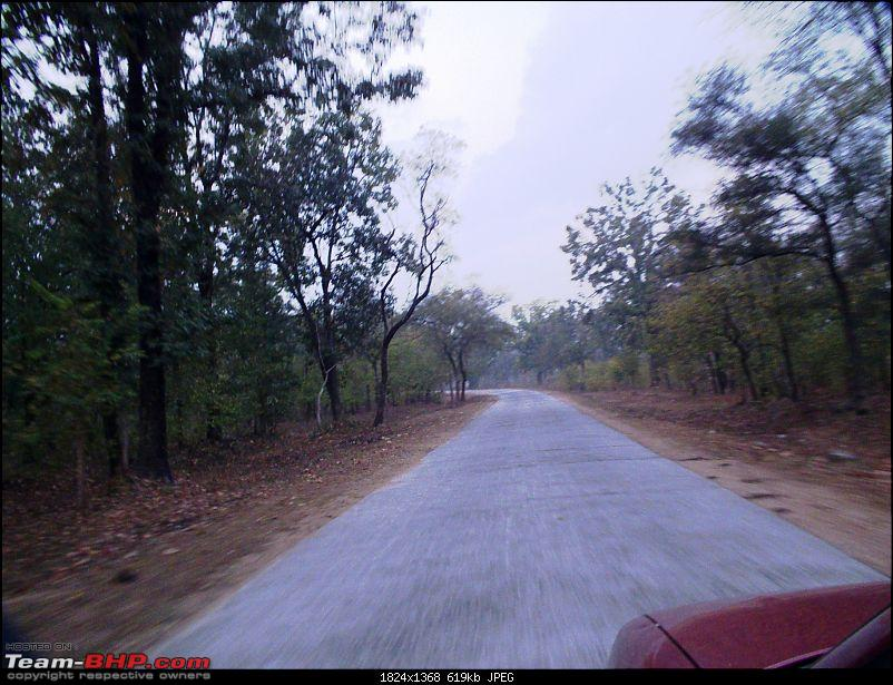 For how long we will be able to see Pench...?-01.jpg