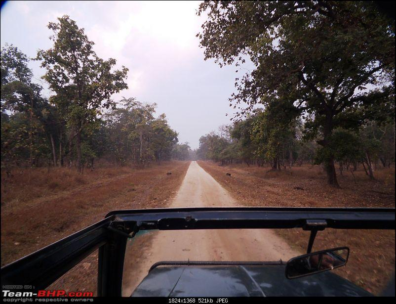 For how long we will be able to see Pench...?-03.jpg