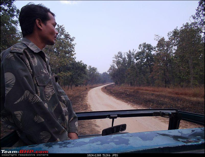 For how long we will be able to see Pench...?-07.jpg