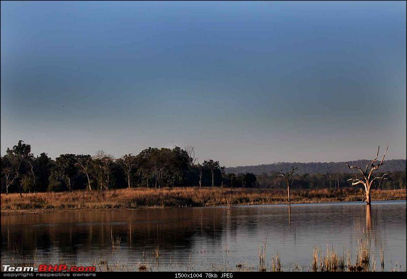 Magnificent Pench !-img_2234.jpg