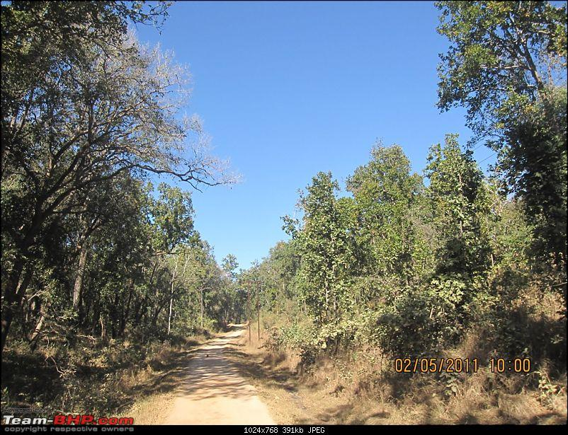 'Getz'ing away: Hyderabad - Nagpur - Kanha - Pench-14.driving-thro-wild-cat-roads.jpg