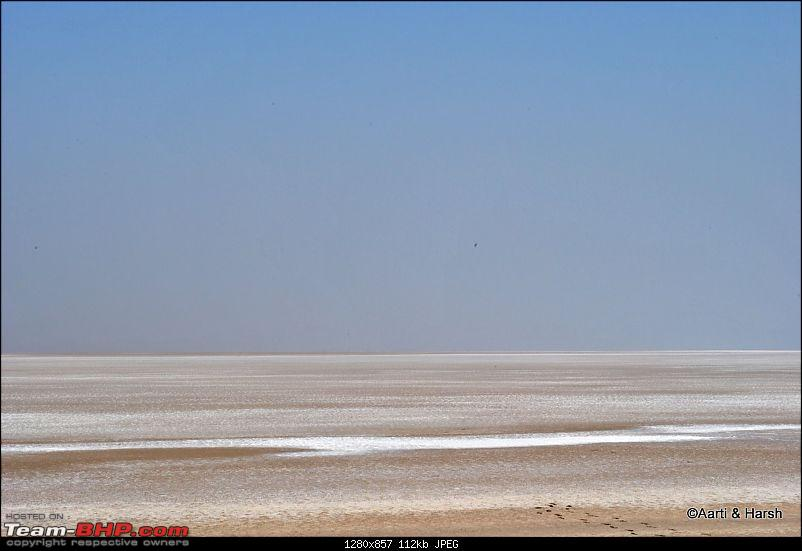 Raiders of the Rann: A Kachchhi Kaleidoscope (Gujarat)-dsc_1890.jpg