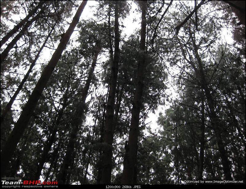 Blore-kanyakumari-kodai-Blore-img_1625.jpg