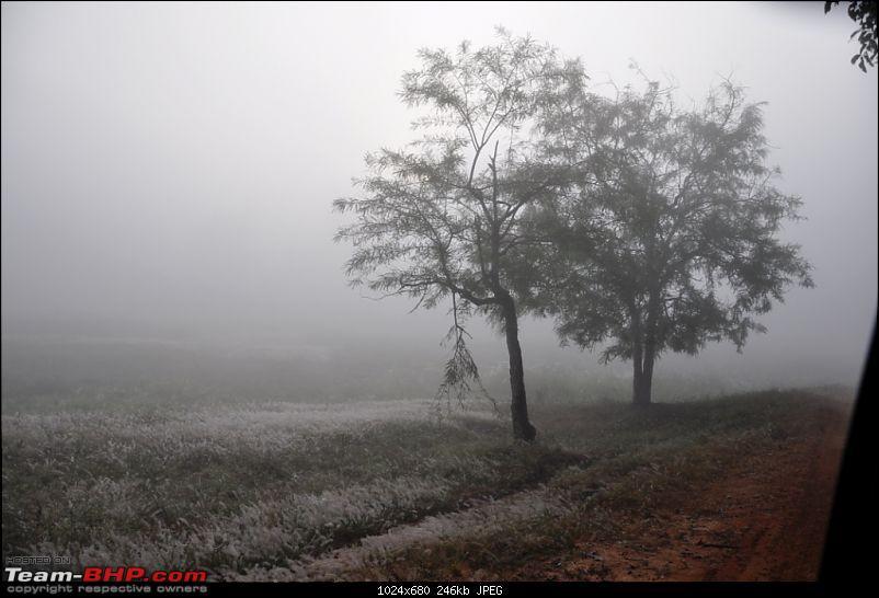 Bandhavgarh Tiger and some Srilankan Wildlife shots.-pic4.jpg