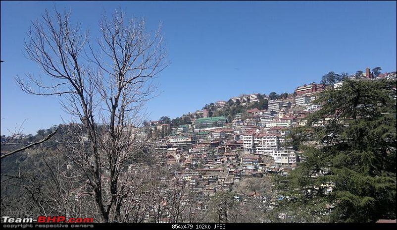 A quick trip to Shimla, Narkanda and chail-15032011304.jpg