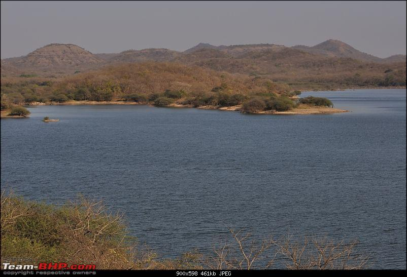 """Sasan Gir"" – The Last Home to Asiatic Lion-girnp-140.jpg"