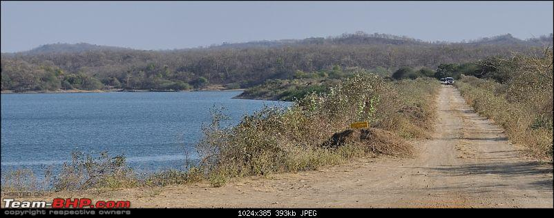 """Sasan Gir"" – The Last Home to Asiatic Lion-girnp-145.jpg"