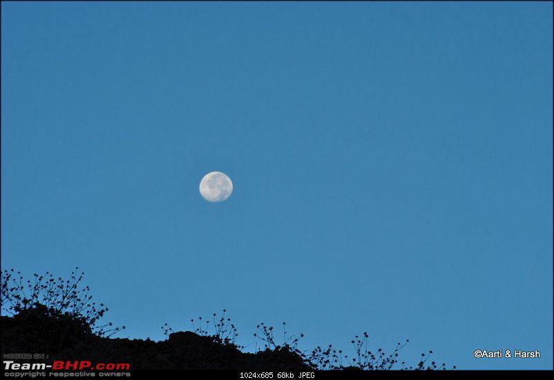To the moon (lake) & back : Chandratal-dsc_04561024.jpg
