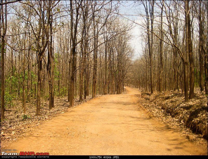 Weekend trip to Chikmagalur-030420111345582.jpg