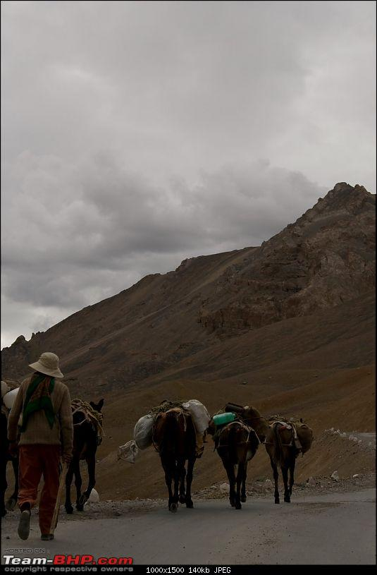 The Great Indian Roadtrip - Mumbai to Ladakh in a SX4-img_8085.jpg