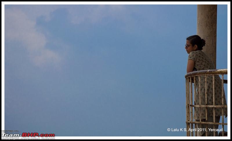 Name:  DSC_6531p.jpg Views: 931 Size:  172.7 KB