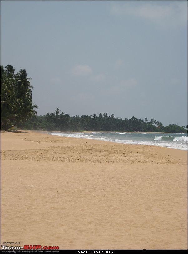 Sri Lankan Splendour-0.5.jpg