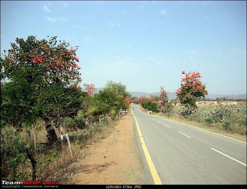 Meanders in Madhya Bharat � Chattisgarh & Kanha-foff.jpg