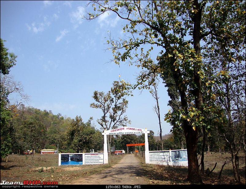 Meanders in Madhya Bharat � Chattisgarh & Kanha-bnp.jpg