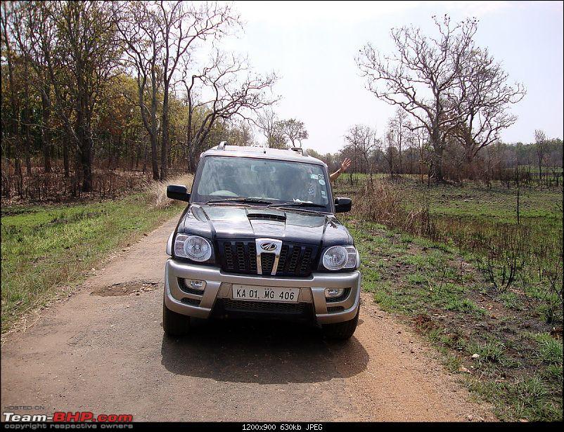 Meanders in Madhya Bharat – Chattisgarh & Kanha-2471.jpg