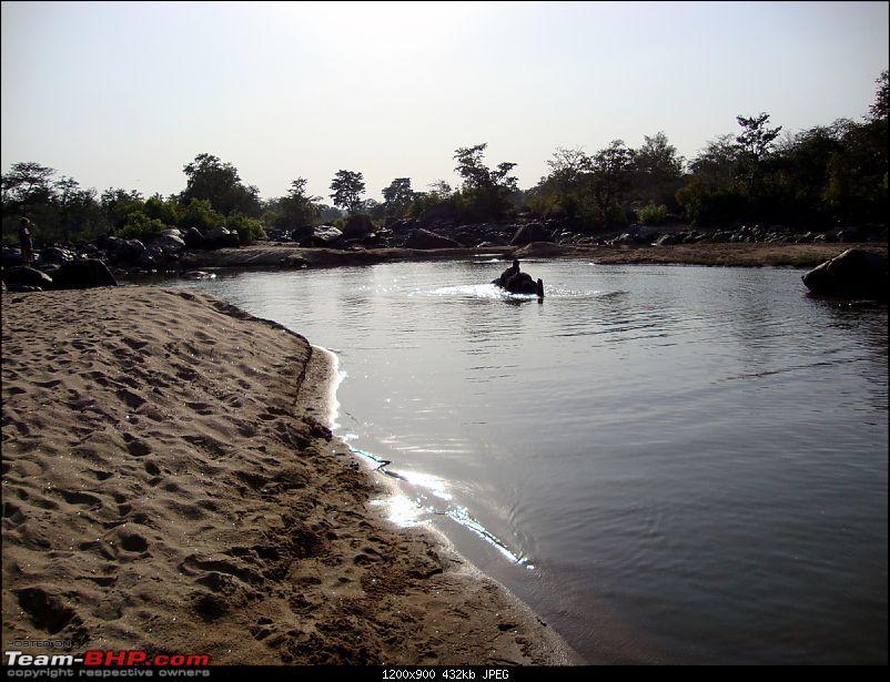 Meanders in Madhya Bharat � Chattisgarh & Kanha-ele-21.jpg