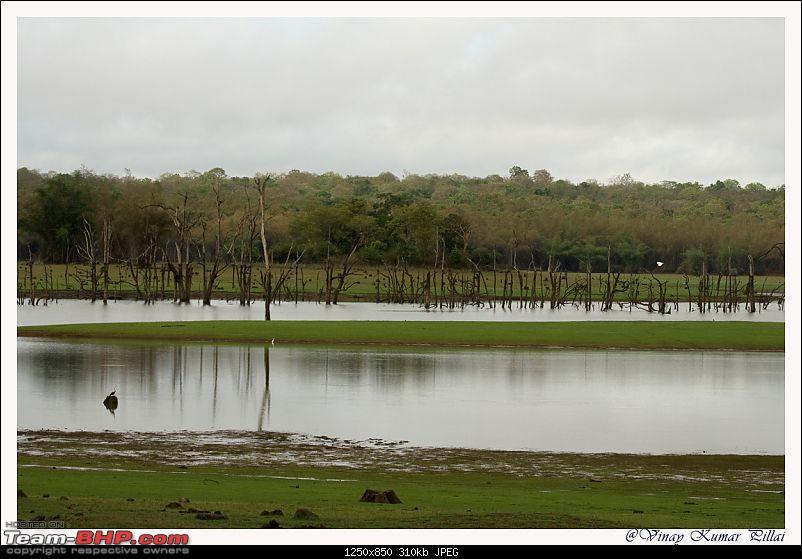 Life in Jungles of Kabini - April 2011-20110419-life-jungles-kabini_0453.jpg