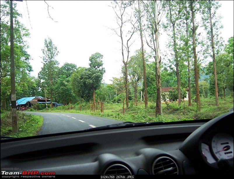 Bangalore -Nagarhole- Irpu (Coorg)- Muthanga (KL) Round Trip-103_7838.jpg