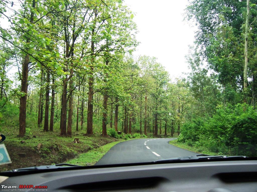 Bangalore -Nagarhole- Irpu (Coorg)- Muthanga (KL) Round Trip
