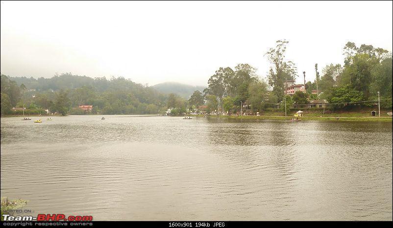 Cochin - Munnar - Kodaikanal-p1050851.jpg