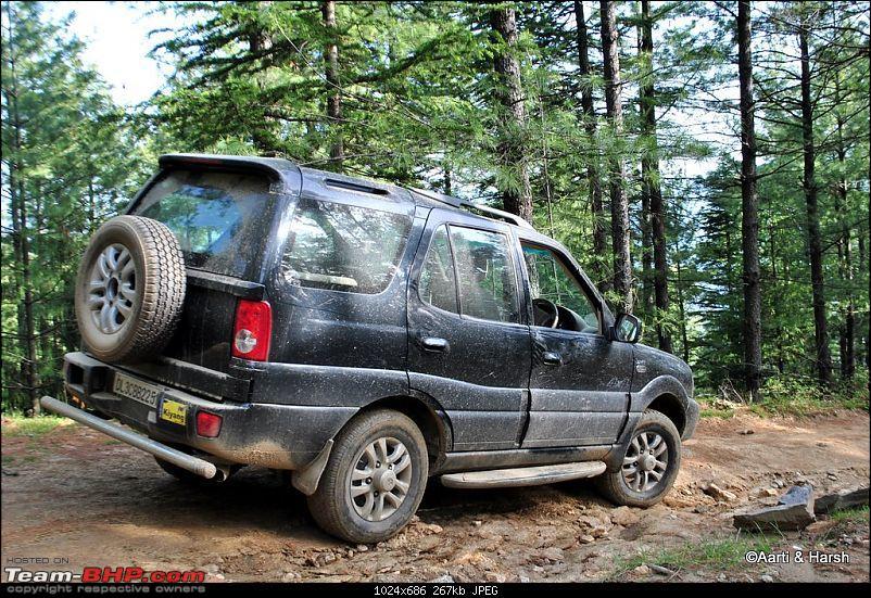 A drive to Pabbar valley & Chanshal: Spring break 2011-dsc_5236.jpg