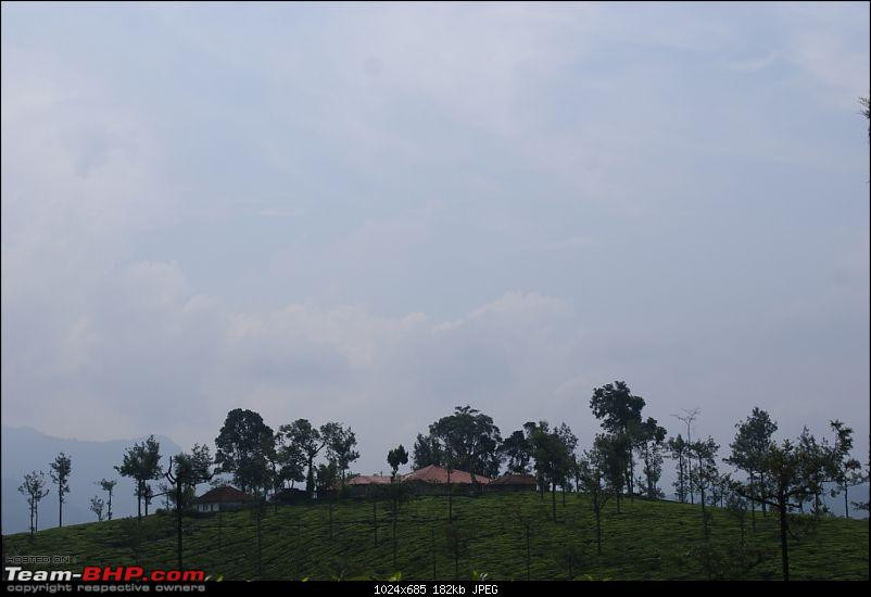 Bangalore Munnar Kodaikanal Valparai - 10 days of bliss-zgad.jpg