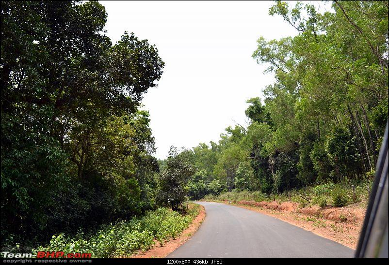 Fauji's Drivologues – Chasing Mango showers in WAYANAD and MALNAD!-road-walden1.jpg