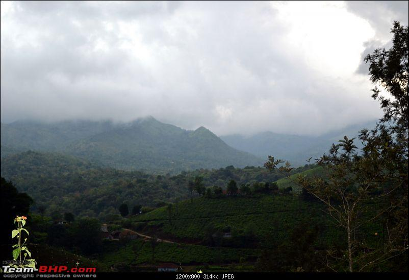 Fauji�s Drivologues � Chasing Mango showers in WAYANAD and MALNAD!-dsc_0122.jpg