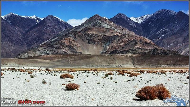 Name:  Ladakh Changthang17.jpg Views: 15292 Size:  160.2 KB