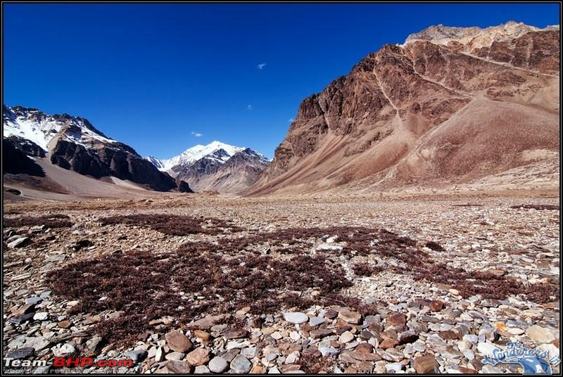 Name:  Ladakh Changthang71.jpg