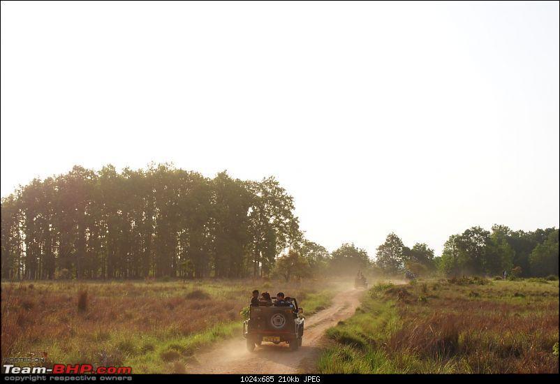 The Wild Beckons: Bhopal-Bhedaghat-Dhuandhar-Kanha-rush-hour.jpg
