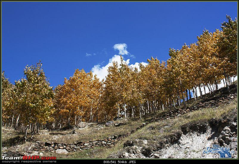 "Self-Drive Expedition Travel-Ladakh and cold desert Changthang in ""off-season"" Oct 10-img_2441.jpg"