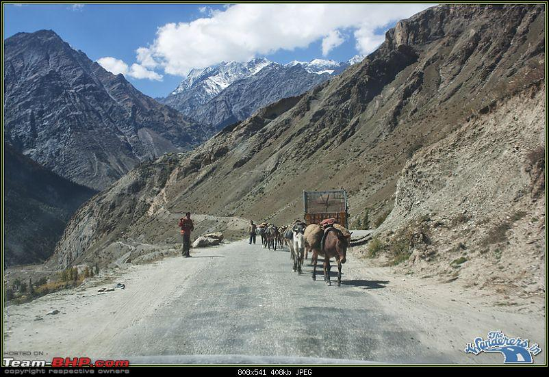 "Self-Drive Expedition Travel-Ladakh and cold desert Changthang in ""off-season"" Oct 10-img_2445.jpg"