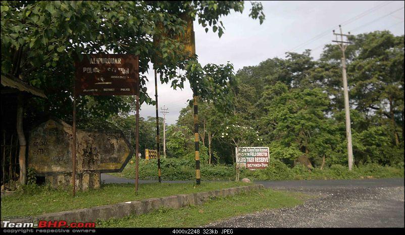 Guwahati getaways: Tura Siliguri Gangtok Kalimpong Darjeeling Phultshiling-nh-31c9-buxa-tiger-re-.jpg