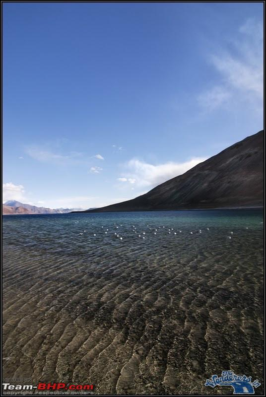 Name:  Ladakh Changthang111.jpg